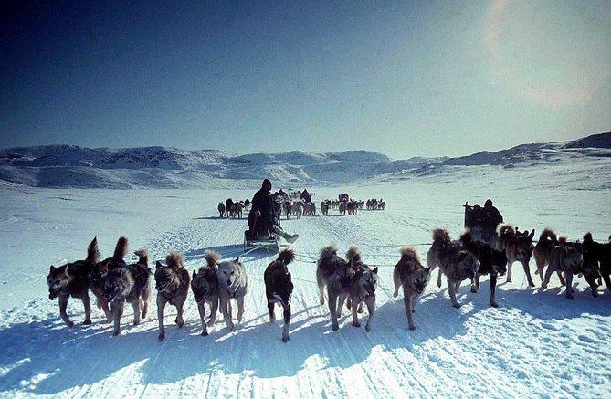 10 fakta menarik mengenai eskimo 2 2rh60