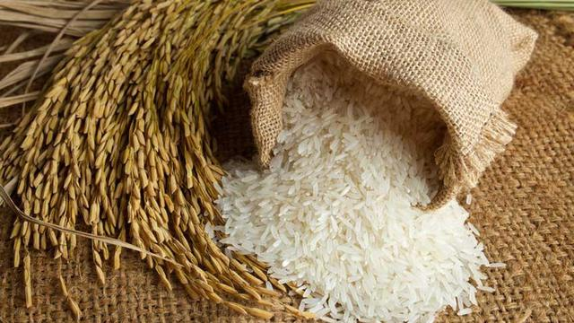 ada beras taruh dalam padi senarai peribahasa yang anda tak pernah dengar