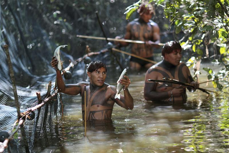 amazon suku kaum yang jauh dari peradaban manusia
