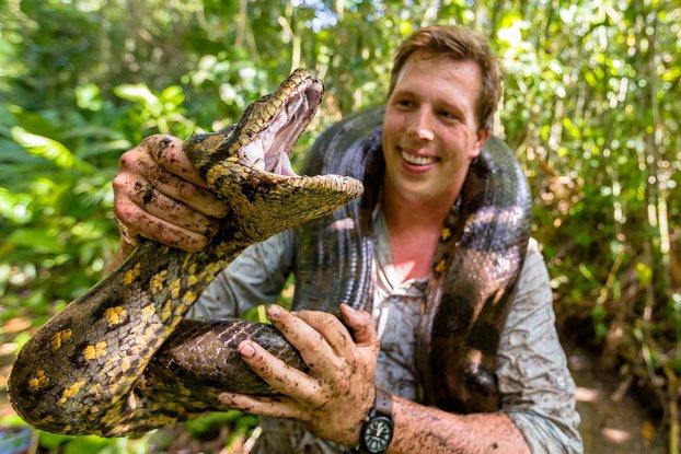 anaconda dan manusia