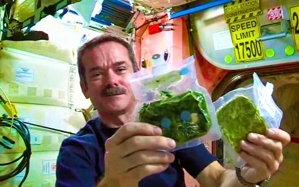 angkasawan makan dalam pesawat angkasa