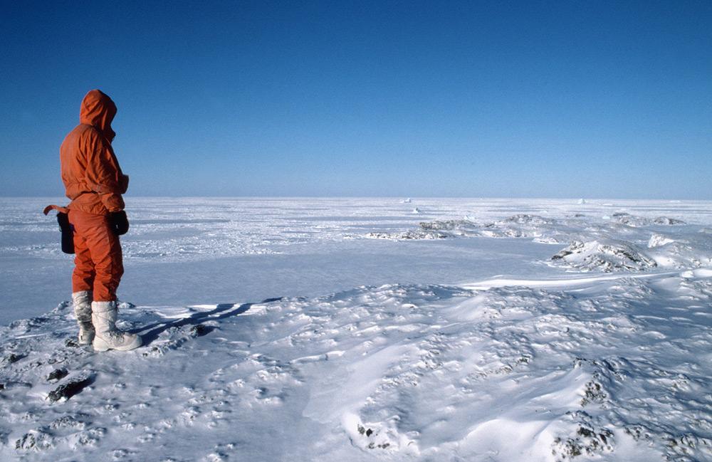 antartika gurun paling besar di dunia