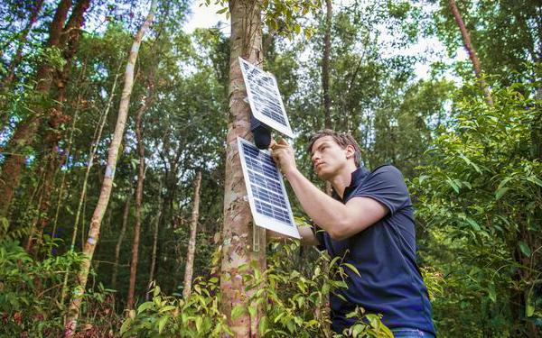 aubrey daniel forest hero