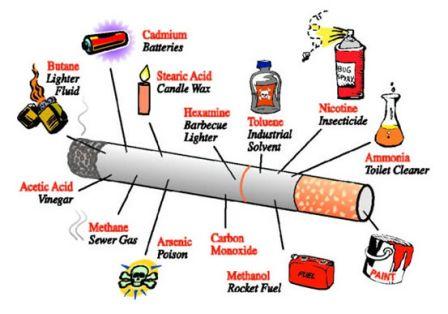 bahan dalam rokok