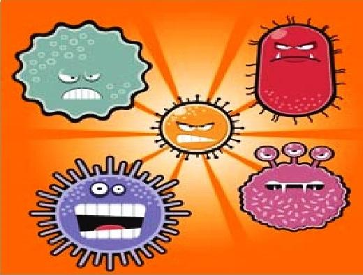 bakteria 932