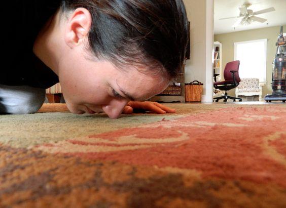 bau karpet hilang dengan serbuk teh