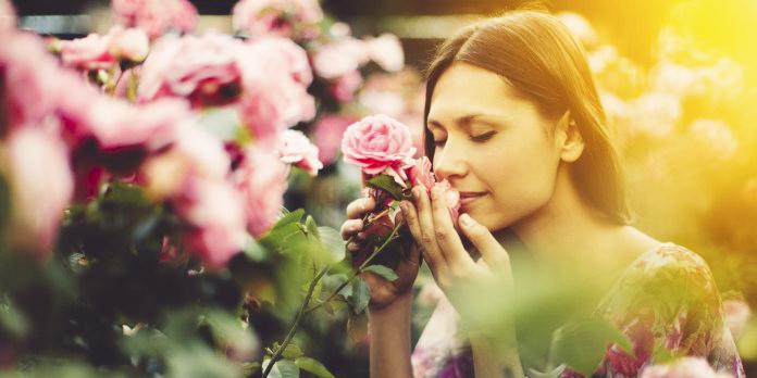 bau wanita 6 daya tarikan wanita yang menarik perhatian lelaki tanpa disedari
