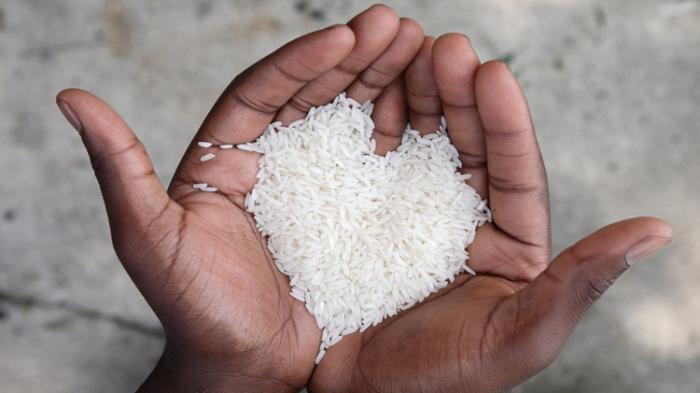 beras bentuk kasih sayang love shape rice