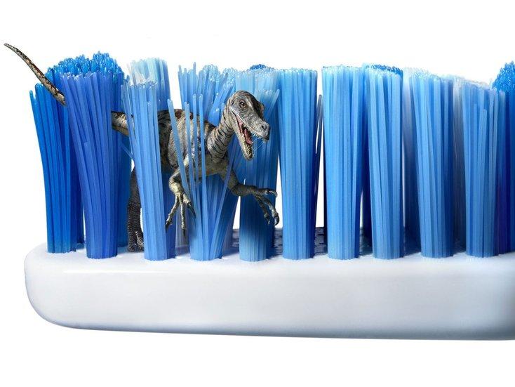 berus gigi boleh jadi tempat pembiakan bakteria sekiranya tidak ditukar atau dicuci dengan betul