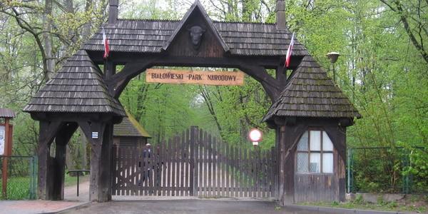 bialowieski taman negara poland