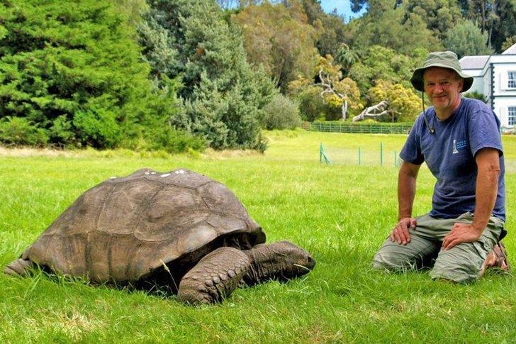 binatang jangka hayat terpanjang