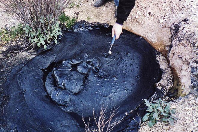 bitumen asli di oil seeps