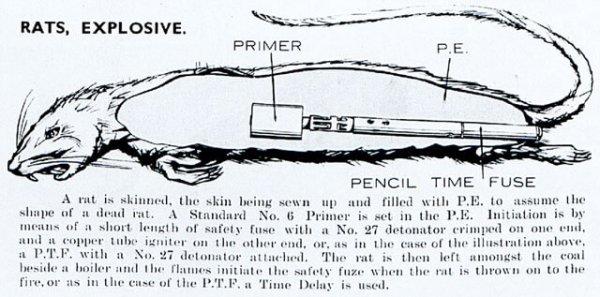 bom tikus senjata paling dahsyat digunakan dalam perang dunia kedua