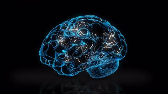 brain impulse