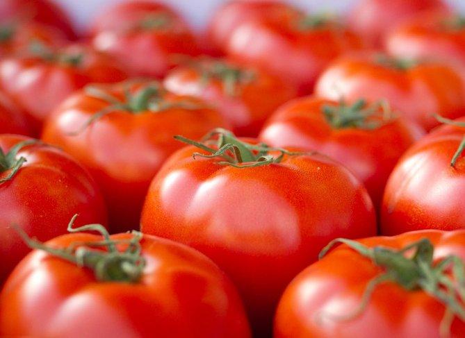 buah tomato