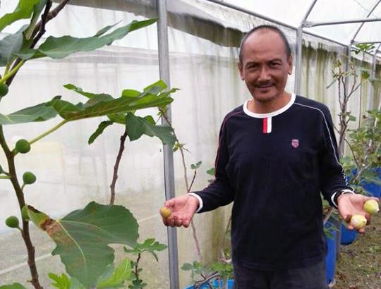 cikgu zul bersama hasil dari pokok tin