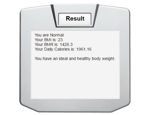 contoh bmr dan kalori harian