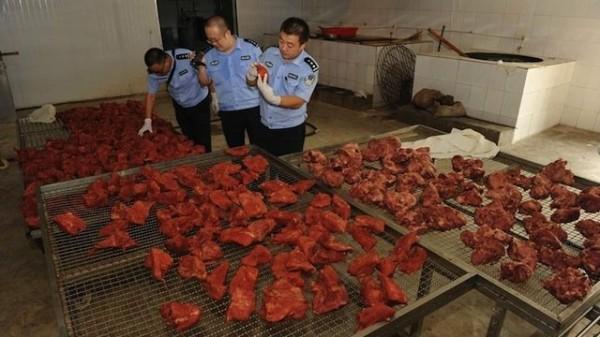 daging tiruan china