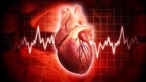 degupan jantung mereka tidak terkawal dan sentiasa naik turn secara mendadak