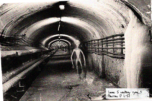 dulce base 2