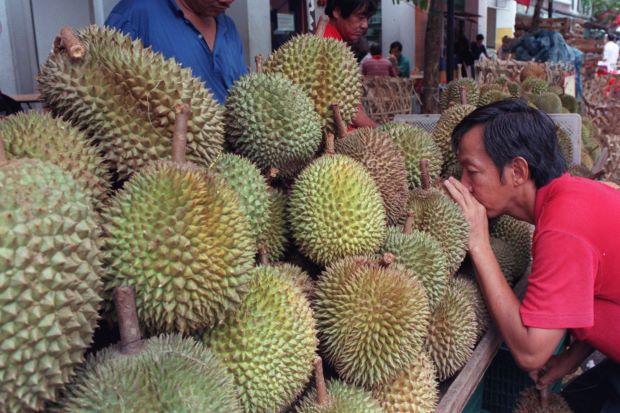 durian tinggi kolestrol