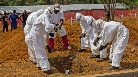 ebola 5 penyakit yang mencegah penyakit lain