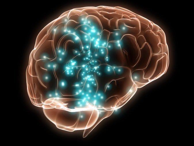 fakta menarik mengenai otak manusia 3
