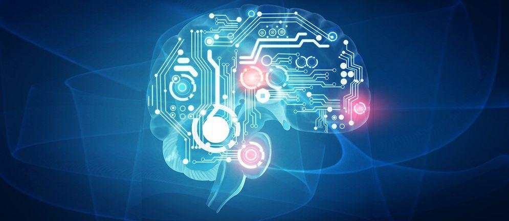 fakta menarik mengenai otak manusia 5