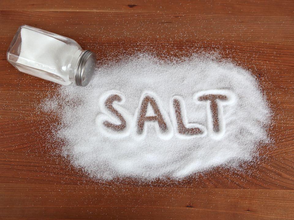 fakta tentang garam