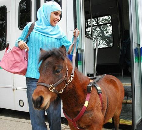 gadis buta dan kuda padi