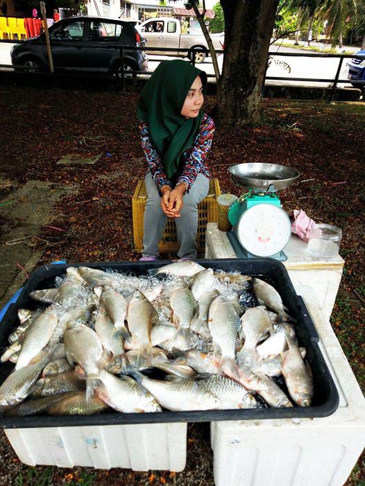 gadis jual ikan