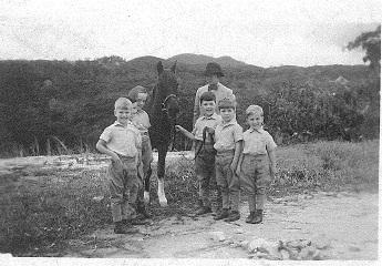 gambar lama cameron highland