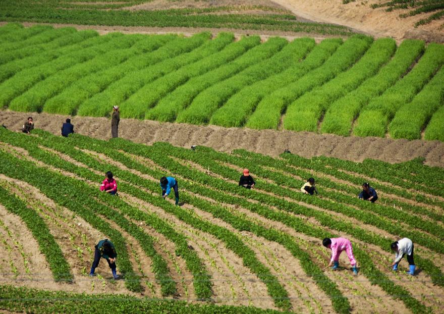 gambar yang haram diambil di korea utara 6 970