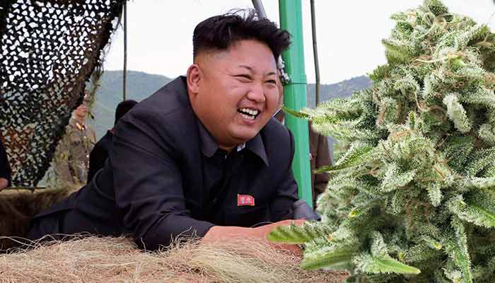 ganja tidak diharamkan 15 fakta pelik dan menarik mengenai korea utara