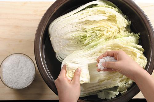 garam kimchi sayur kubis resepi