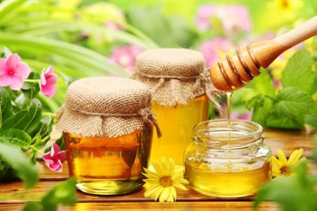 gula pemanis semula jadi natural madu
