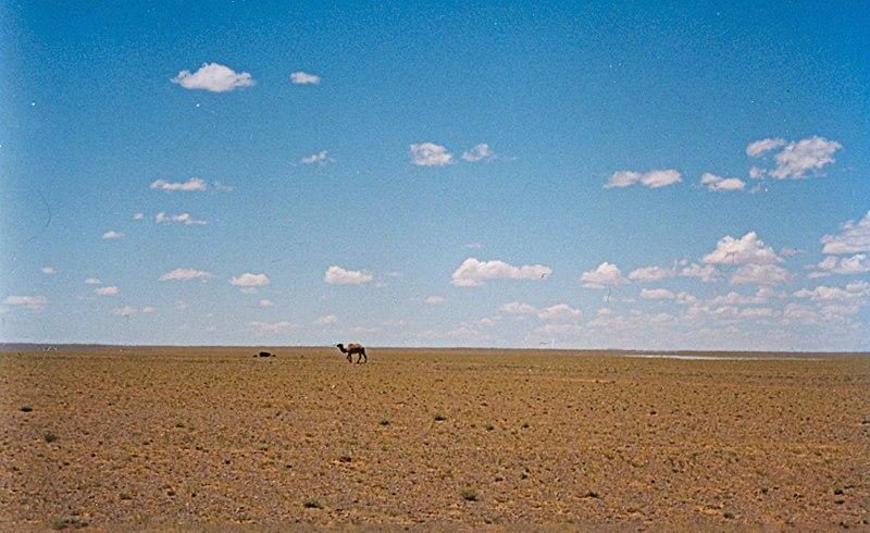 gurun gobi gurun paling besar di dunia