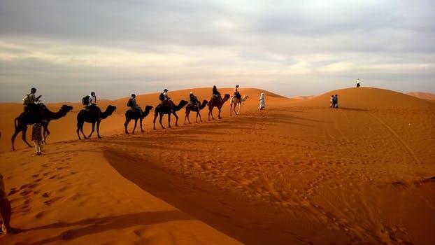 gurun paling besar di dunia 2