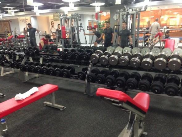 gym 483