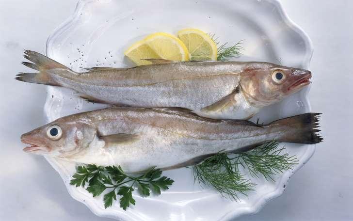 ikan dimakan dengan cara yang betul 228