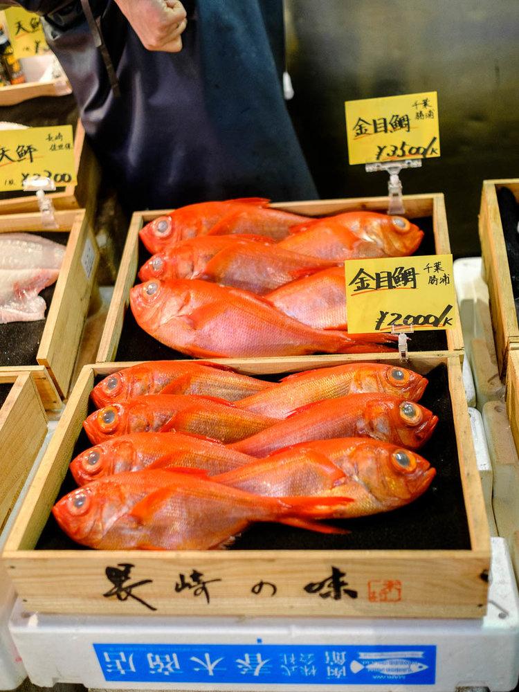 ikan segar setiap hari di pasar tsukiji tokyo jepun