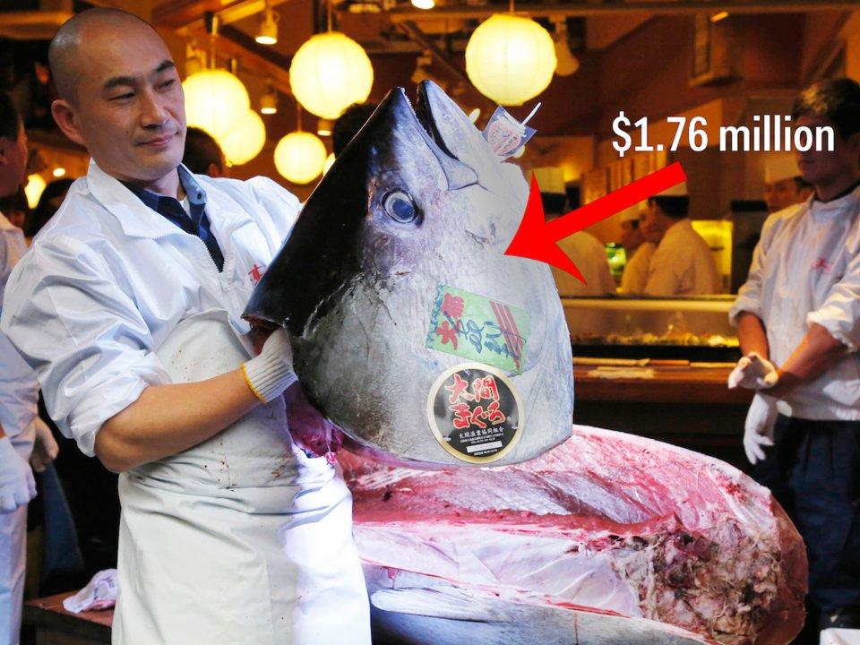 ikan tuna paling mahal pernah dijual di pasar tsukiji tokyo