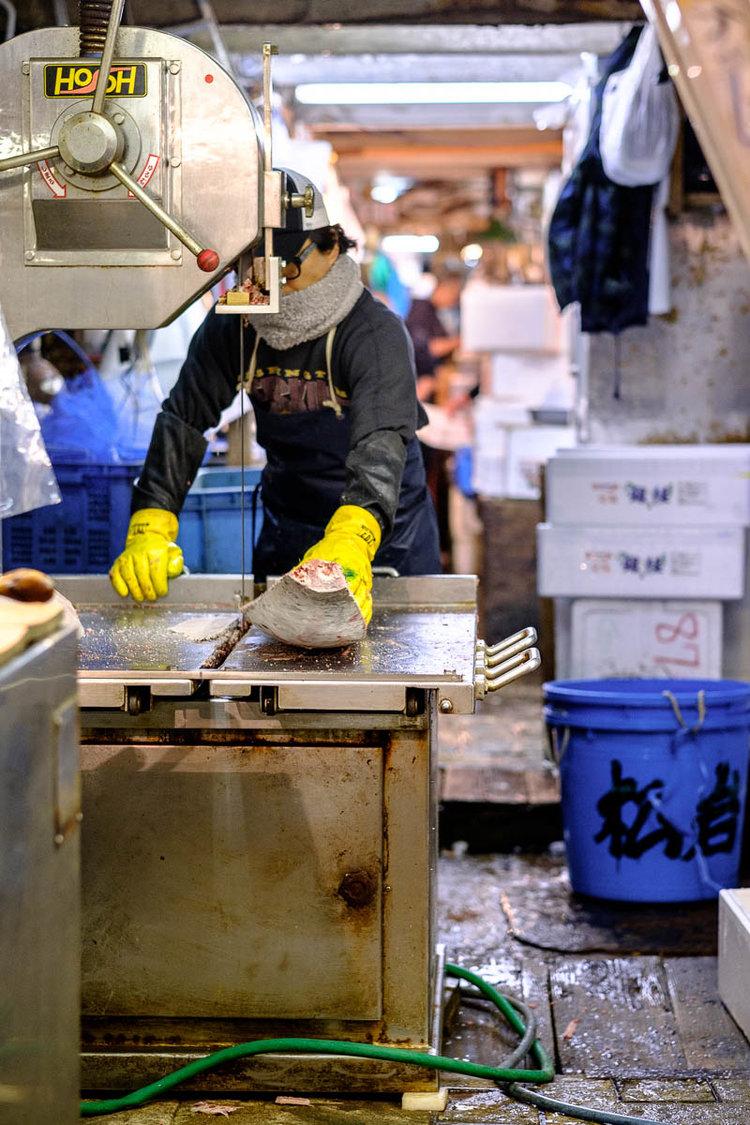 ikan tuna sirip biru dipotong menggunakan gergaji pita