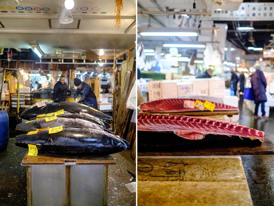 ikan tuna sirip biru paling popular di pasar tsukiji jepun