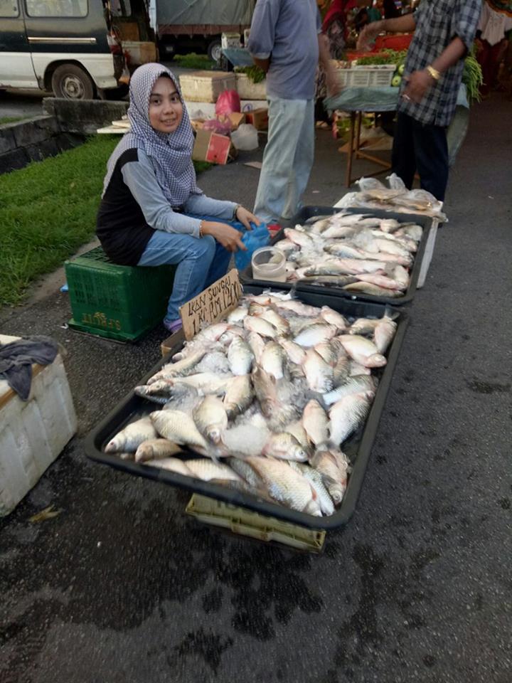 ikin berniaga ikan di pasar malam