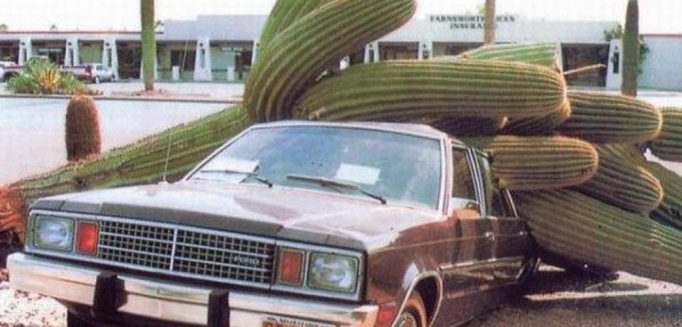 iluminasi tarif insurans kenderaan