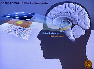 imej dan lokasi di dalam otak