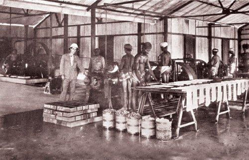india datang sebagai tenaga kerja