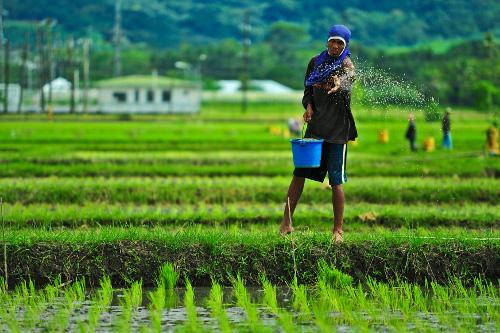 industri pertanian mampu memberikan pulangan lumayan