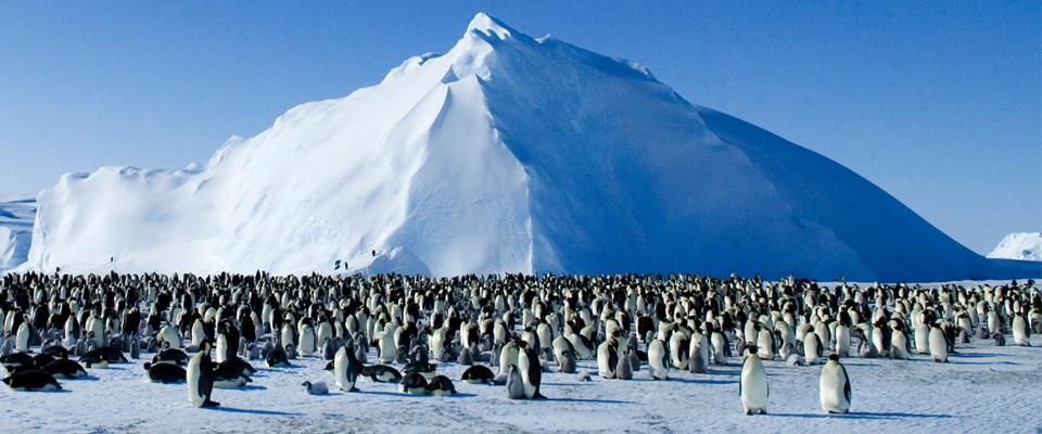 ini apa yang mungkin berlaku jika semua ais di bumi cair semalaman